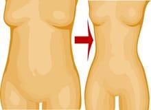 Потеря веса Стоковые Изображения RF