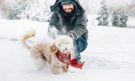 Потеха боя снежного кома с любимцем и его владельцем в снеге зима ho стоковое фото rf