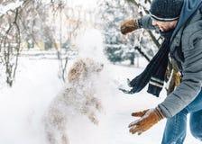 Потеха боя снежного кома с любимцем и его владельцем в снеге зима ho стоковое изображение
