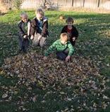 Потеха в листьях Стоковое фото RF