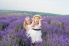 Потеха в поле Стоковое Фото