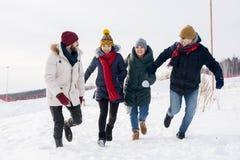 потеха имея детенышей зимы людей Стоковые Изображения