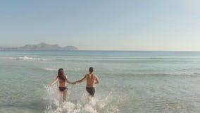 потеха пар пляжа имея детенышей сток-видео