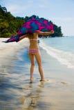 потеха пляжа имея Стоковые Изображения