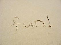 потеха пляжа стоковая фотография rf