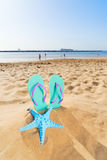 Потеха пляжа лета Стоковое Изображение