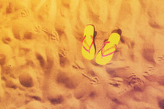 Потеха пляжа лета стоковое фото