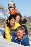 потеха семьи имея детенышей ландшафта снежных Стоковые Изображения