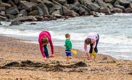 Потеха семьи на пляже Стоковое Изображение RF