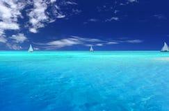 потеха тропическая Стоковая Фотография