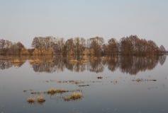 Потоки весны Стоковая Фотография RF