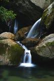 потоки горы Стоковые Изображения