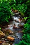Потоки горы Стоковое фото RF
