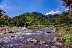Потоки реки стоковая фотография rf