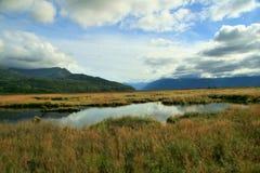 поток Аляски Стоковая Фотография RF