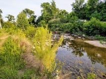 Поток бежать через парк Killeen стоковые изображения rf