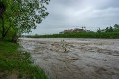 Поток весны на реке стоковые изображения rf
