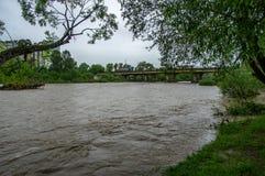 Поток весны на реке стоковое фото