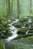 поток весны np больших mtns ландшафта закоптелый Стоковые Изображения