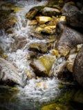 Поток воды горы в Bansko стоковая фотография