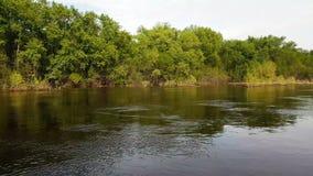 Поток воды на реке видеоматериал