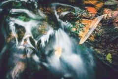 Поток водопада Потоки воды естественных лесов Стоковое Фото