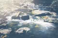 Поток водопада Потоки воды естественных лесов Стоковые Изображения RF