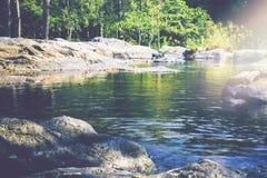 Поток водопада Потоки воды естественных лесов Стоковое Изображение