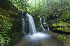 Поток & водопады, Greenbrier, большие закоптелые горы NP Стоковое Фото