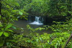 Поток & водопады, Greenbrier, большие закоптелые горы NP стоковая фотография