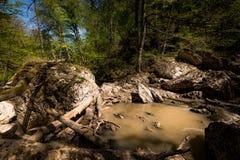 Поток воды пропуская среди утесов Стоковое Изображение RF