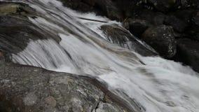 Поток воды ручейка горы видеоматериал