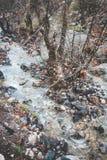 Поток в горах стоковые фотографии rf