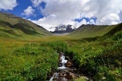 Поток в горах Стоковые Фото