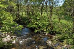 Поток в гористых местностях Шотландии стоковые изображения rf