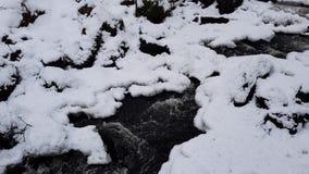 Поток в зимнем лесе видеоматериал