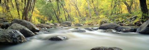 Поток в каньоне хлопока стоковые фото