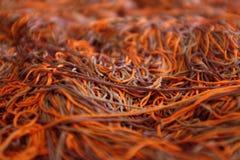Поток в красном цвете Стоковые Фото