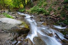Поток в лесе горы Стоковые Фото