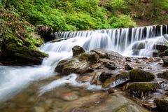 Поток в лесе горы Стоковое фото RF