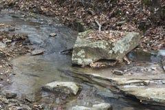 Поток в лесе с большим утесом стоковая фотография rf