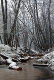 Поток в пуще зимы Стоковое Фото