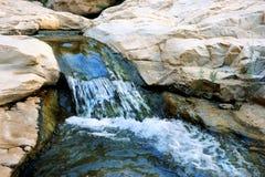 Поток в Ein Gedi стоковая фотография rf