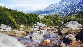 Поток в Juneau, Аляске стоковая фотография