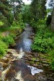 Поток гористой местности в Шотландии Стоковое Изображение RF