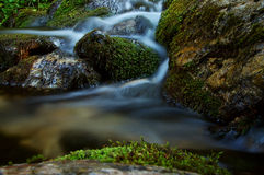 поток гористой местности Стоковая Фотография