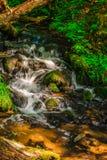 Поток горы в глуши Стоковые Изображения