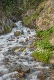 Поток горы в лете Стоковое Фото