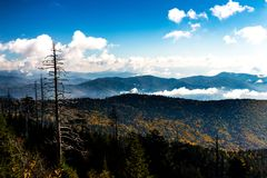 Поток горы в осени Стоковые Фото