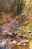 Поток горы в осени Стоковые Изображения